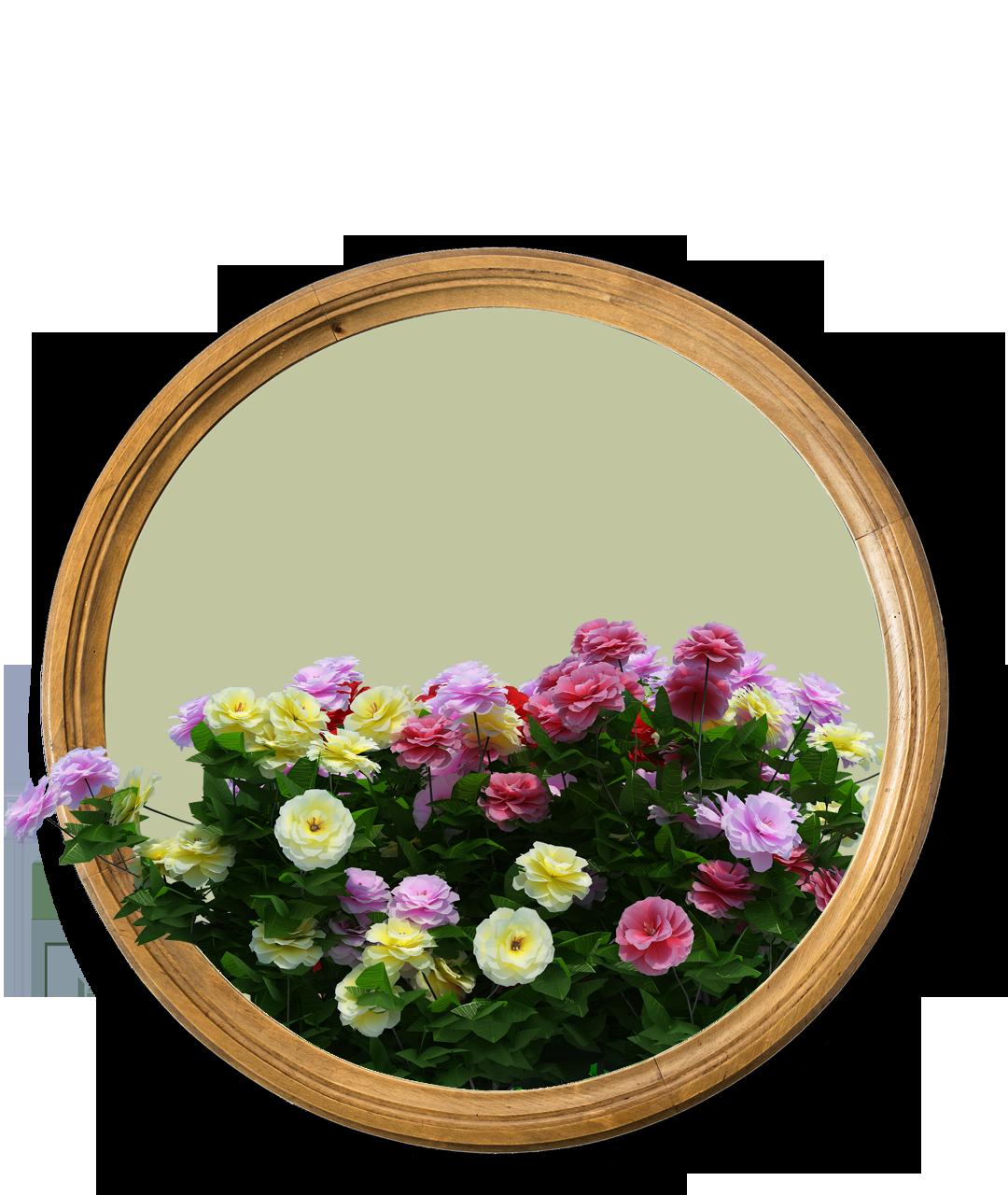 Vybornų medelynas - vienmetės gėlės
